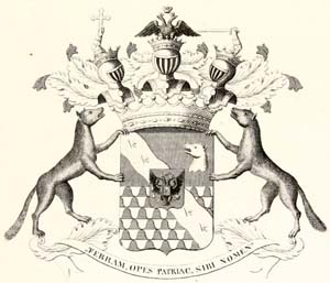 Герб графа Строганова